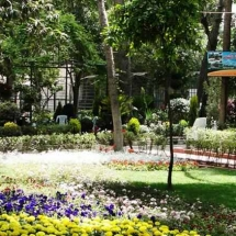 Flowers Festival at Tekyyeh Sulimania - Damascus