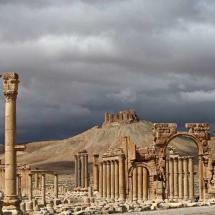 Palmyra-
